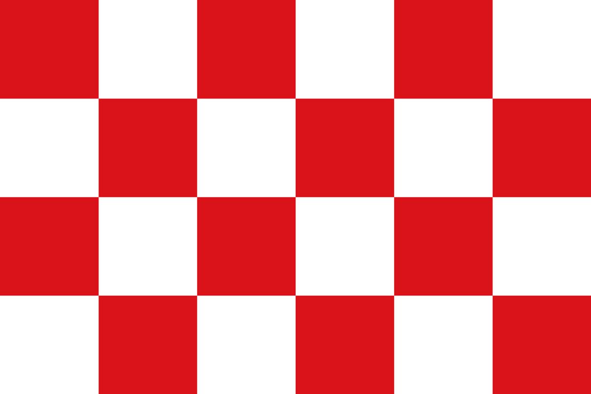 Wespen bestrijding Noord Brabant